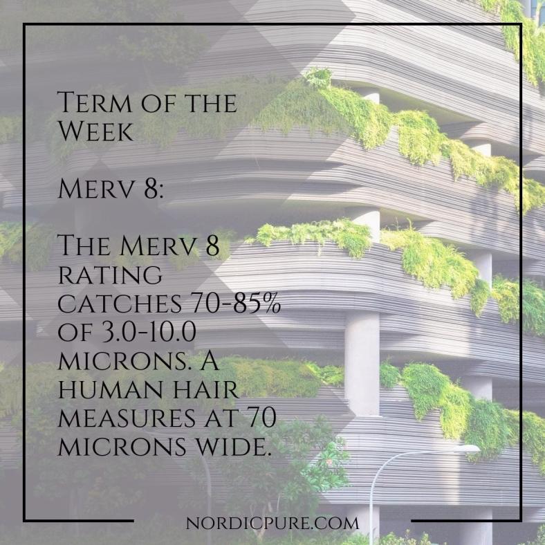 merv8